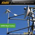 Wind Solar Monitoring System Use 800W Small Wind Turbine Generator