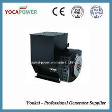 Бесщеточный синхронный генератор переменного тока мощностью 150 кВт переменного тока с одной фазой