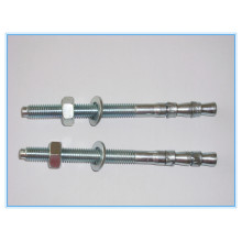 Stainless Steel Screw Type Wedge Anchor Bolt