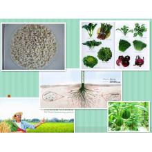 Fertiliseur OEM microporeux soluble dans l'eau NPK