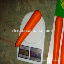 2017 fresh carrot export India with best price