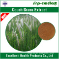 natural Couch Grass Extract