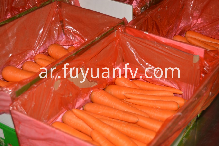 carrot in package