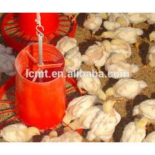 Precio de equipo de pollo automático granja de aves de corral