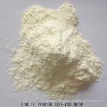 Polvo de ajo de suministro de fábrica con buena calidad