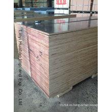 Madera contrachapada de la construcción del álamo / del abedul / de la madera dura y madera contrachapada del encofrado (HB208)