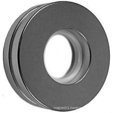 Big Size NdFeB Magnet with Ring Shape