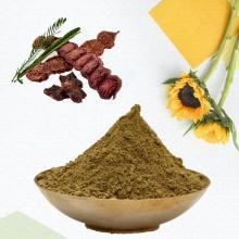 Supply 100% Natural Shikakai Extract Powder Shikakai Powder