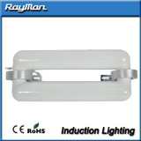 Excellent induction light fixture induction light sources