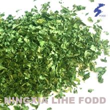 Parsley leaves 1-1.5mm,2mm.4mm Air dried granula