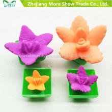 Hot Moda Crescer Brinquedos para Chindren Mini Ponsai Engraçado Crescer Cactus Can Grow