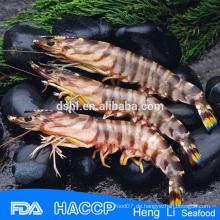 HL002 Gefrorene Garnelen Meeresfrüchte für den Export