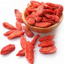 FDA orgânica certificada goji berry seca doce goji berry