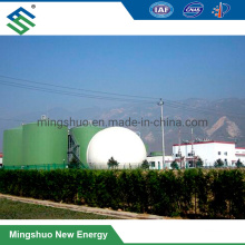Enamel Steel Material Made Anaerobic Reactor Assembled Type