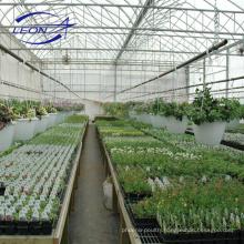 Leon series plastic film greenhouse equipment