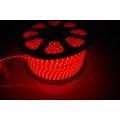 SMD505050 3528 300 LED 220V bande de LED pour extérieur avec CE Rohs