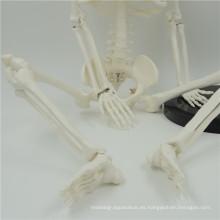 Venta caliente mini esqueletos de plástico