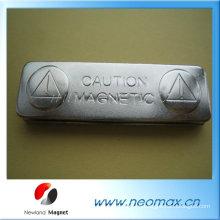 Metal, nombre, insignia, magnético, espalda