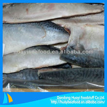 high quality new frozen mackerel fillet