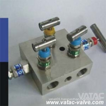 Stainless Steel Ss304/Ss316/Ss304L/Ss316L Compact Gauge Valve