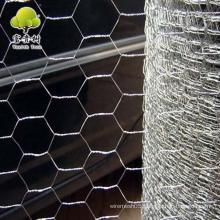 hexagonal chicken wire mesh for farm animals/galvanized chicken wire mesh/hexagonal mesh