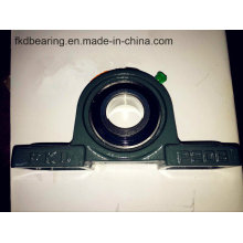 Bearing, Pillow Block Bearing, Ukp206