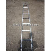 Escalera de acero galvanizada / escalera de mono