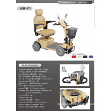 Disabled Scooter, Handicapped Mobility Scooter (XT-FL447)