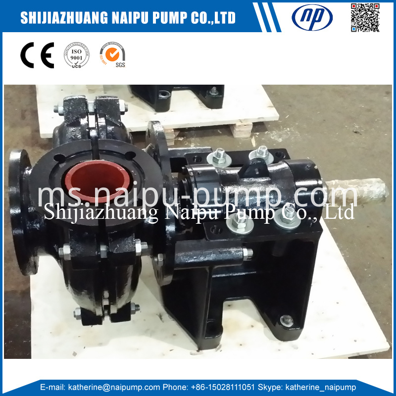 100dl Slurry Pump