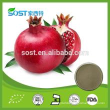 SOST Manufacturer Pomegranate Peel Extract Ellagic Acid