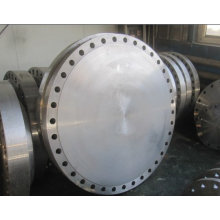 Weld Neck & Blinds Flanges