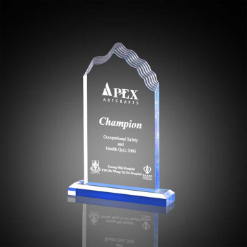 Personalized engraved humorous trophies awards gift