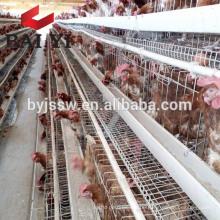 Schicht Hühnerkäfig für Hühnerstall Plan (5000 Vögel, 10000 Vögel, 20000 Vögel)