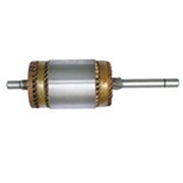 auto starter ARMATURES for Algentina Sample 35257788
