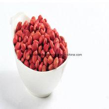 Red Skin Peanut Kernel, Roud Type, Silihong