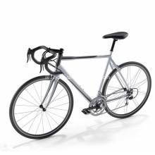 Aluminum Alloy Frame Fixed Gear Bike Cycling