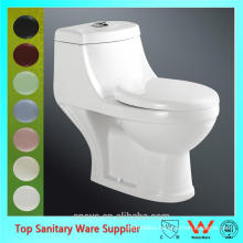 egg shaped washdown one piece toilet