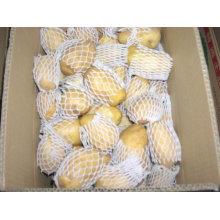 Pomme de terre fraîche chinoise 2011