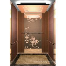 Passenger Elevator Lift Home Elevator Lift Hl-X-026