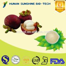 Beste Qualität von Mangosteen PE-Pulver 10% / 20% 30% / 90% Mangostin