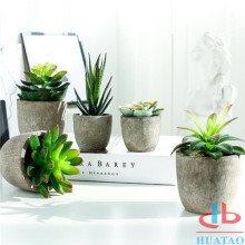 New Design Artificial Succulent Plants in Modern Pots