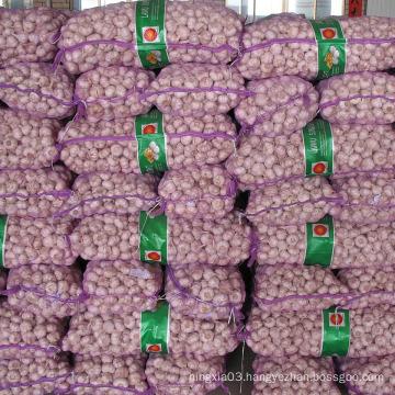 10kg bags fresh garlic for turkey