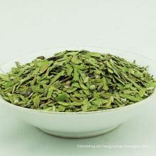 Yunnan Yhc roto té verde