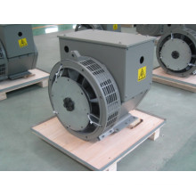 8.8kw/11kVA Small Power AC Alternator