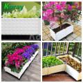 Horticultura Vertical Indoor Plantando Jardim Vegetal Box sistema