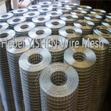 Wholesale cheap low carbon steel welded wire mesh