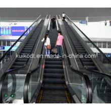 Rolltreppe für Bahnhof oder andere Öffentlichkeit