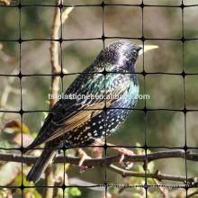 New virgin HDPE cheap garden anti insect nets , anti insect bird net