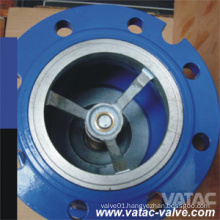 DIN Ci/Di Axial Flow Check Valve with Flange Ending