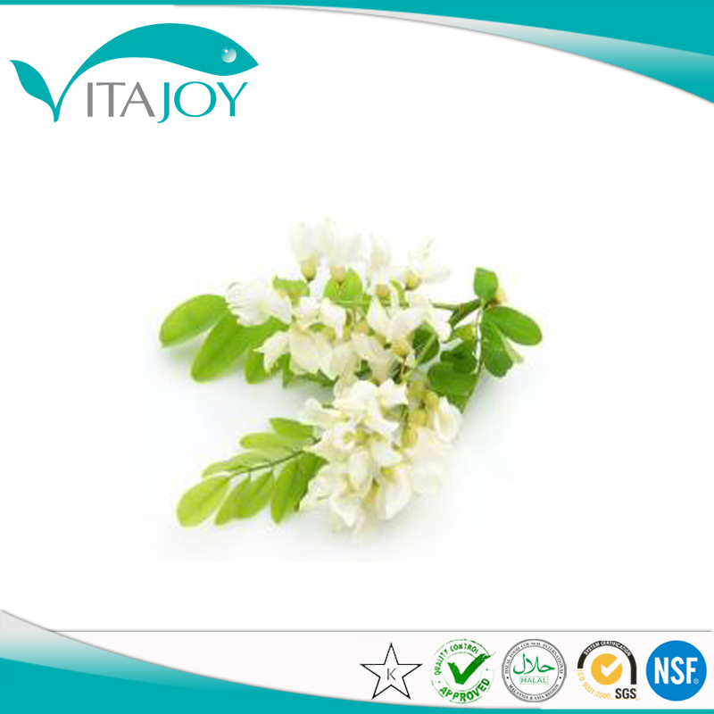 Sophora Japonica Extract powder Rutin NF11 powder
